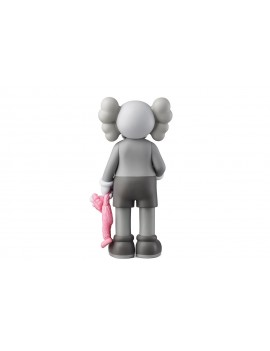 KAWS SHARE GREY & PINK BFF 2020